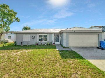 1110 LONDONWOOD STREET, Brandon, FL, 33510,