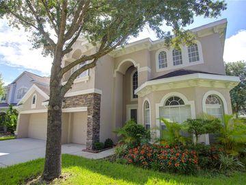 17803 ARBOR CREEK DRIVE, Tampa, FL, 33647,