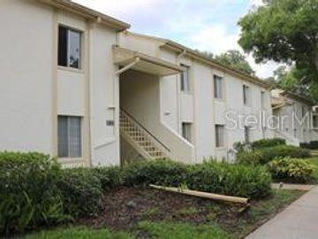 284 CYPRESS LANE #56, Oldsmar, FL, 34677,