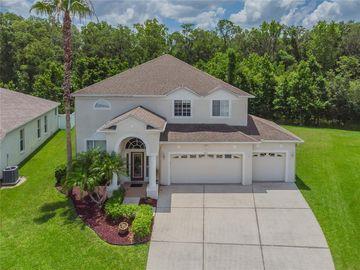 4546 ROSLYN COURT, Land O Lakes, FL, 34639,