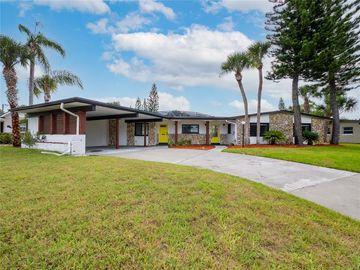 3423 WILDER LANE, Orlando, FL, 32804,