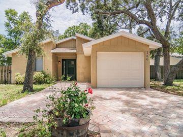 786 MERLINS COURT, Tarpon Springs, FL, 34689,