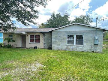 14602 LAKE AVENUE, Dover, FL, 33527,