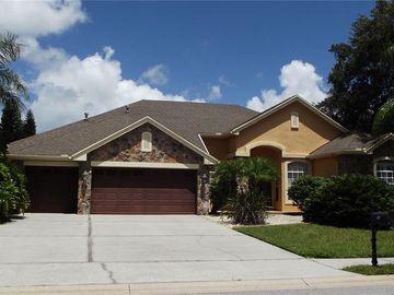 2151 EDELWEISS LOOP, Trinity, FL, 34655,