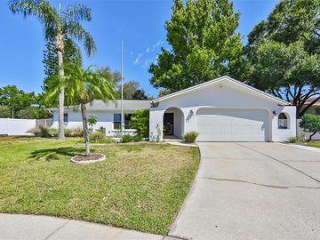 11247 VILLAGE GREEN COURT, Seminole, FL, 33772,