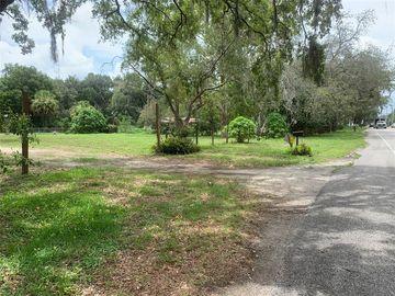15106 LIVINGSTON AVENUE, Lutz, FL, 33549,