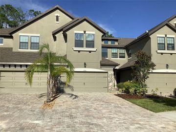 4948 WANDERING WAY, Wesley Chapel, FL, 33544,