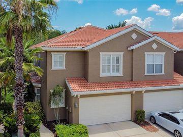 4961 ANNISTON CIRCLE, Tampa, FL, 33647,