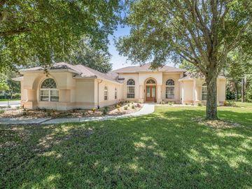 15127 SURREY BEND, Brooksville, FL, 34609,
