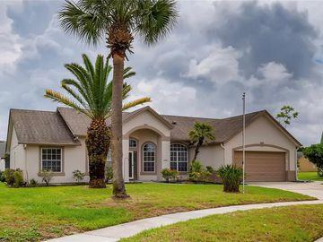 12551 BRITWELL COURT, Orlando, FL, 32837,