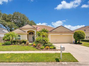 24404 ROLLING VIEW COURT, Lutz, FL, 33559,