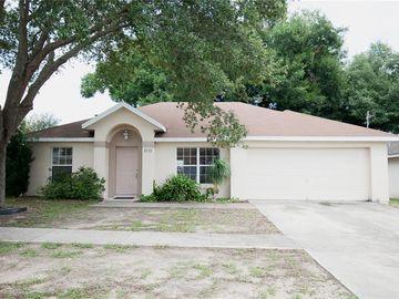 3711 MEADOW GREEN AVENUE, Tavares, FL, 32778,