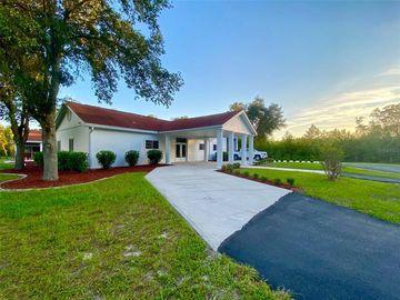 26292 LOST HORSE LANE, Brooksville, FL, 34601,