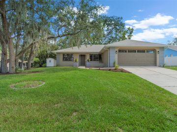 2490 STANTON AVENUE, Spring Hill, FL, 34609,