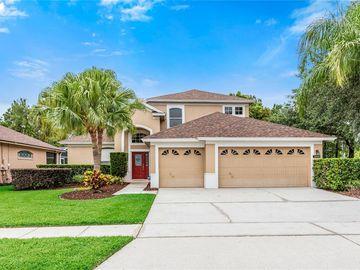 13969 BLUEWATER CIRCLE, Orlando, FL, 32828,