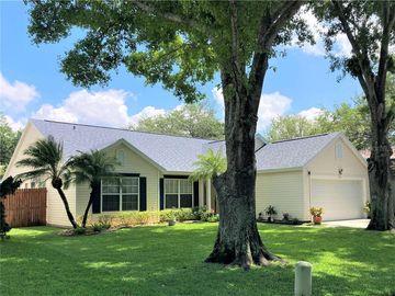 1466 RIVER OAKS DRIVE, Tarpon Springs, FL, 34689,