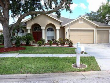 28508 HANGING MOSS LOOP, Wesley Chapel, FL, 33543,