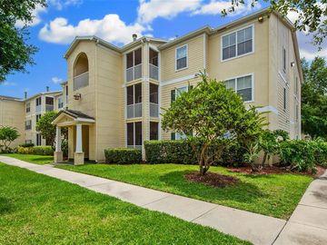 18119 BRIDLE BIT LANE #18119, Tampa, FL, 33647,