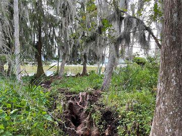 None FLORIDA AVENUE, Astatula, FL, 34705,
