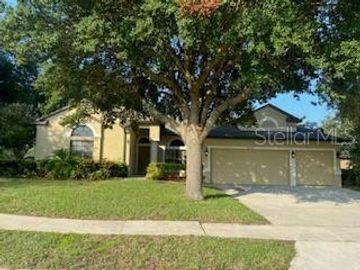 24728 CALUSA BOULEVARD, Eustis, FL, 32736,