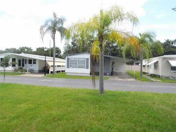 10874 POPLAR STREET NE #89, St Petersburg, FL, 33716,