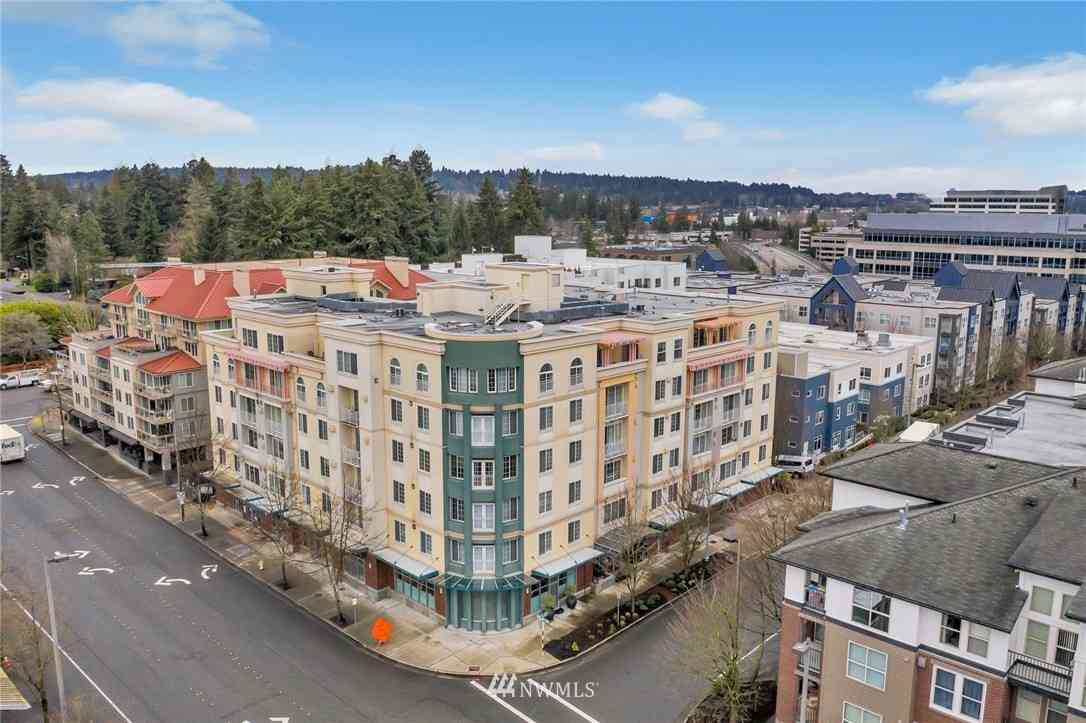 11004 NE 11th Street #503, Bellevue, WA, 98004,