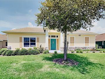 8885 BEACON HILL AVENUE, Mount Dora, FL, 32757,