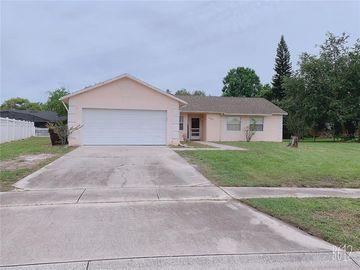 1558 BIRCHWOOD AVENUE, Kissimmee, FL, 34744,