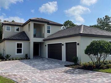 25971 HIGH HAMPTON CIRCLE, Sorrento, FL, 32776,