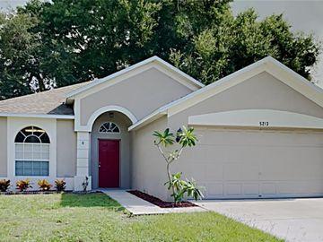 5213 WATSON ROAD, Riverview, FL, 33578,