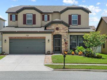 3096 PRINCEWOOD DRIVE, Minneola, FL, 34715,
