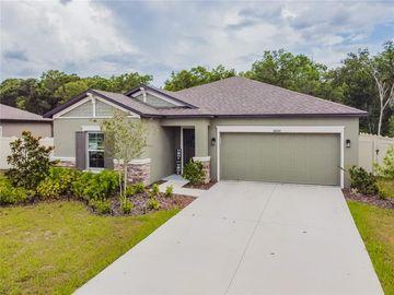 18684 ALFARO LOOP, Spring Hill, FL, 34610,