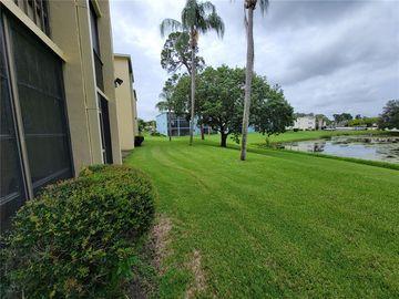 1450 HEATHER RIDGE BOULEVARD #105, Dunedin, FL, 34698,