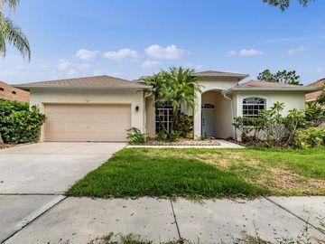 18113 KARA COURT, Tampa, FL, 33647,