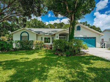 9775 58TH STREET N, Pinellas Park, FL, 33782,