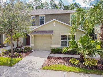 2752 BIRCHCREEK DRIVE, Wesley Chapel, FL, 33544,