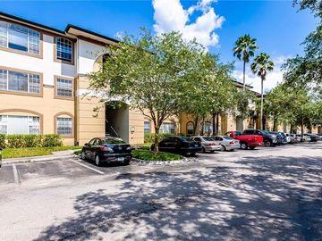 17110 CARRINGTON PARK DRIVE #808, Tampa, FL, 33647,