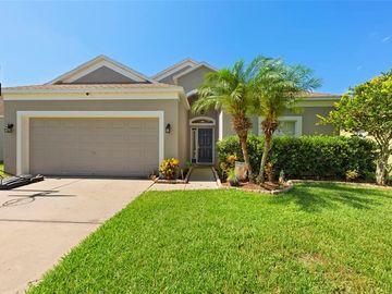 3618 TRAPNELL RIDGE DRIVE, Plant City, FL, 33567,