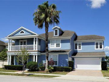 113 PEACE RIVER COURT, Groveland, FL, 34736,