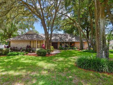 6317 E 113TH AVENUE, Temple Terrace, FL, 33617,