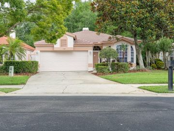 1167 DARTFORD DRIVE, Tarpon Springs, FL, 34688,