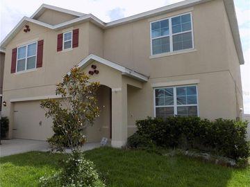 879 FREEDOM BOULEVARD, Davenport, FL, 33837,