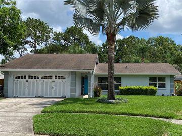 4916 HI VISTA CIRCLE, Tampa, FL, 33625,