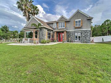 10710 ARROWHEAD LAKE COURT, Thonotosassa, FL, 33592,