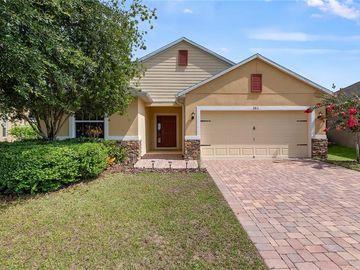 3811 RYEGRASS STREET, Clermont, FL, 34714,