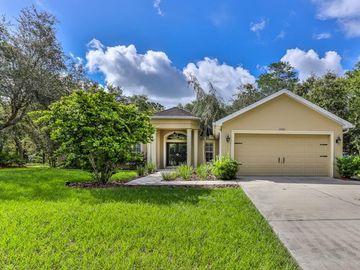 10322 NODDY TERN ROAD, Brooksville, FL, 34613,