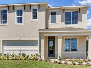 3323 LOGAN BERRY DRIVE, Mount Dora, FL, 32757,