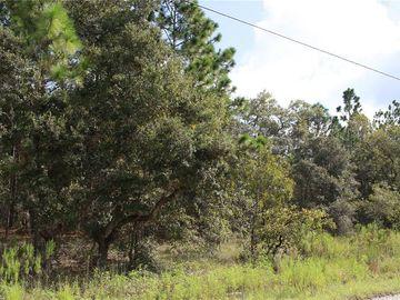 13141 TRAPPER JOHN ROAD, Weeki Wachee, FL, 34614,