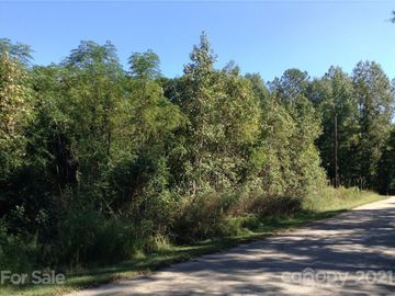 0 Barnes Road, Great Falls, SC, 29055,