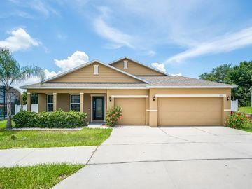 1375 WATER WILLOW DRIVE, Groveland, FL, 34736,